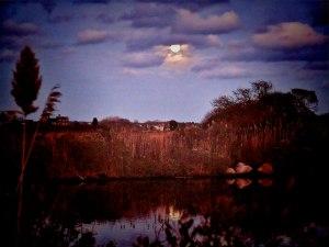 moon snug harbor L1050716_2